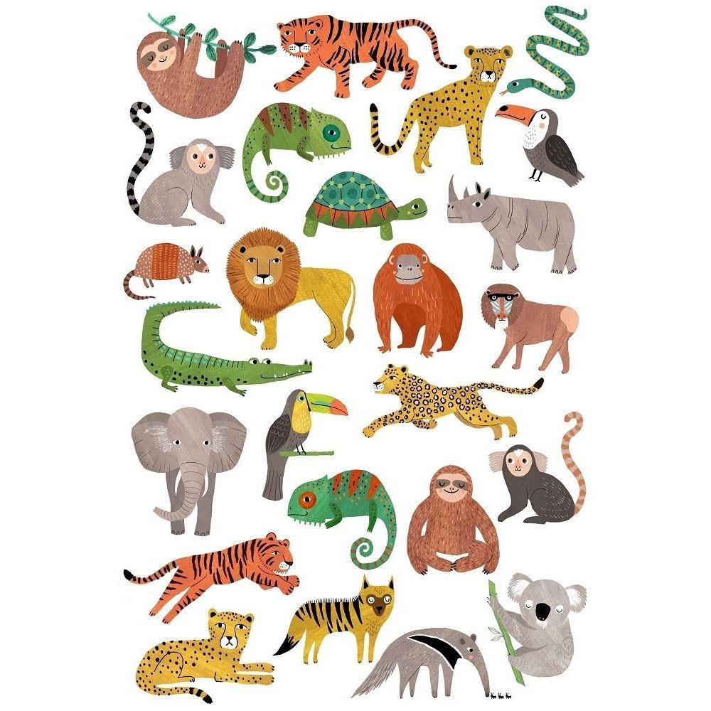Viidakon Eläimet