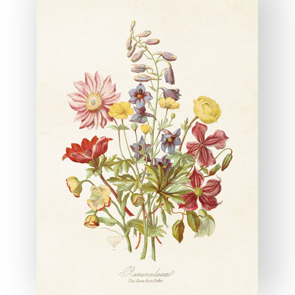 """Kaunis, vintage-henkinen Sköna Ting juliste """"Summerfield"""". Painettu tukevalle, mattapintaiselle pahville. 18 x 24 cm. Aivan ihana lahjaidea!"""
